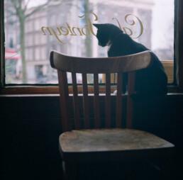 Café Fonteyn - Moes