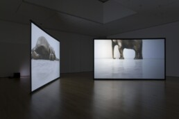 Douglas Gordon's two channel Play Dead; Real Time at MoMA